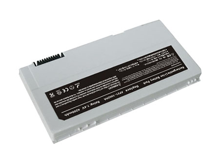 AP21-1002HA batterie