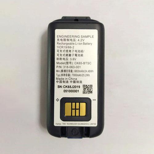 Honeywell 318-063-001 batterie