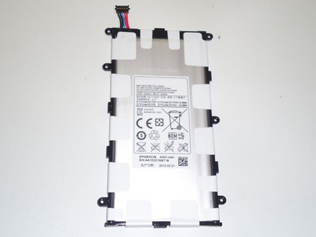 Samsung SP4960C3B batterie